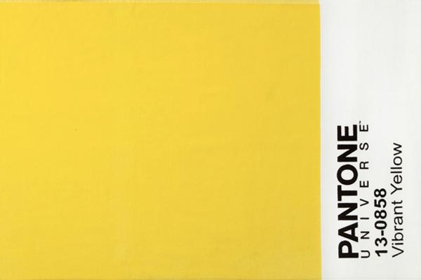 Telo mare cimato di spugna in puro cotone BASSETTI Pantone Universe - Vibrant Yellow